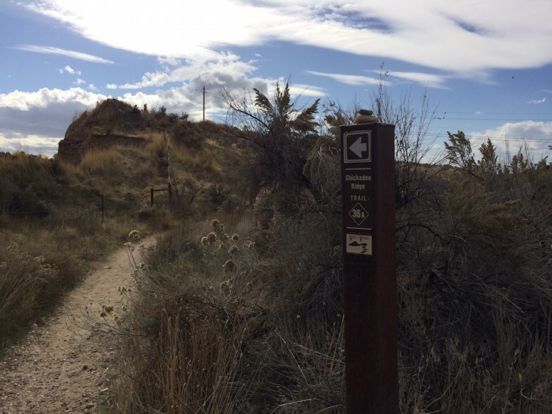 Chickadee Ridge from Red Fox upper